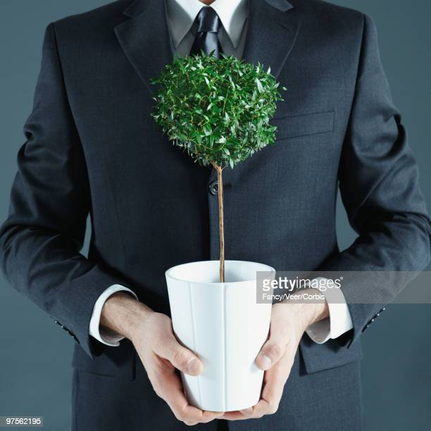 Businessman holding potted plant