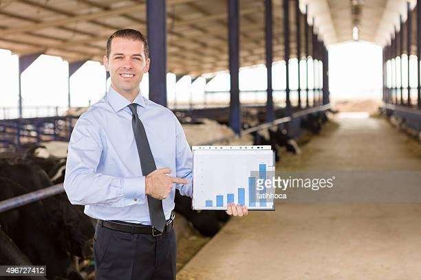 Businessman in Cow Farm