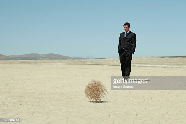 businessman in desert with tumbleweed - tumbleweed stock photos and pictures