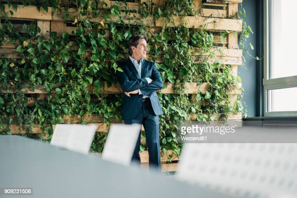 businessman in green office looking out of window - environmental conservation stock photos and pictures