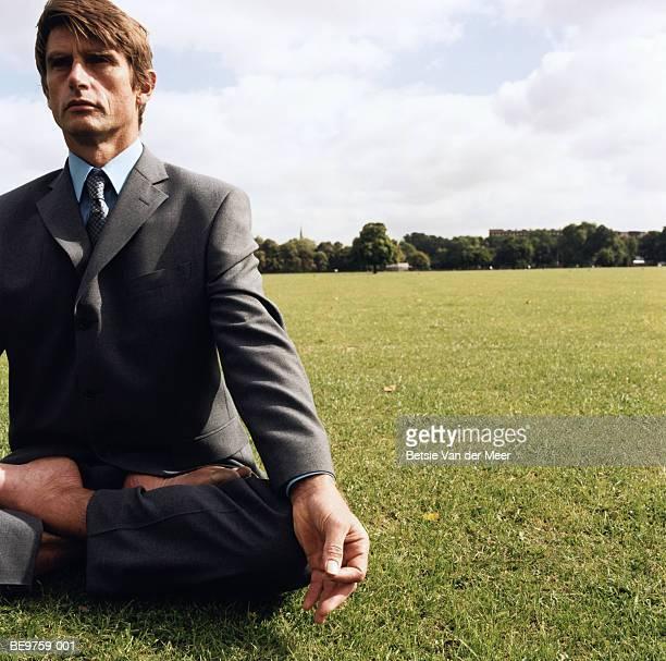 Businessman in lotus position, in field