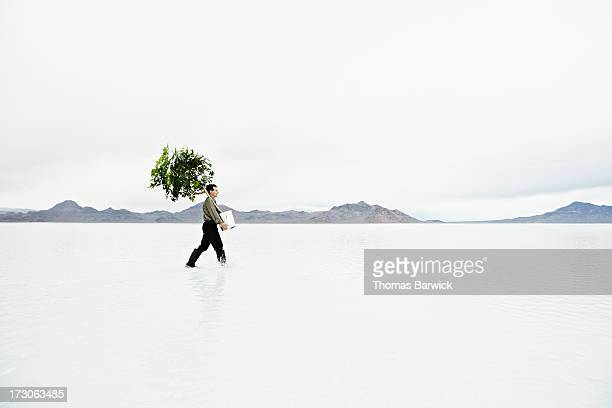 Businessman in shallow water carrying potted tree