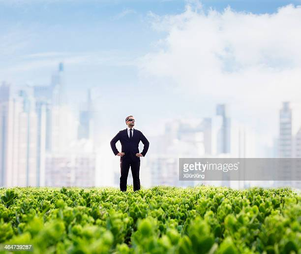 Businessman in sunglasses  and hands on hips standing in a green field with city skyline in the background
