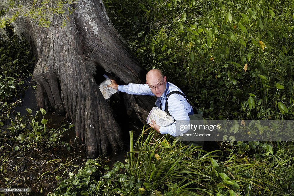 Businessman in swamp with money, looking back, elevated view : Stock Photo