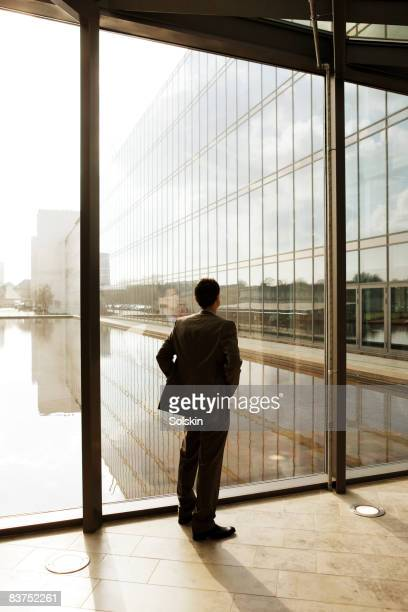 Businessman looking through window, back to camera