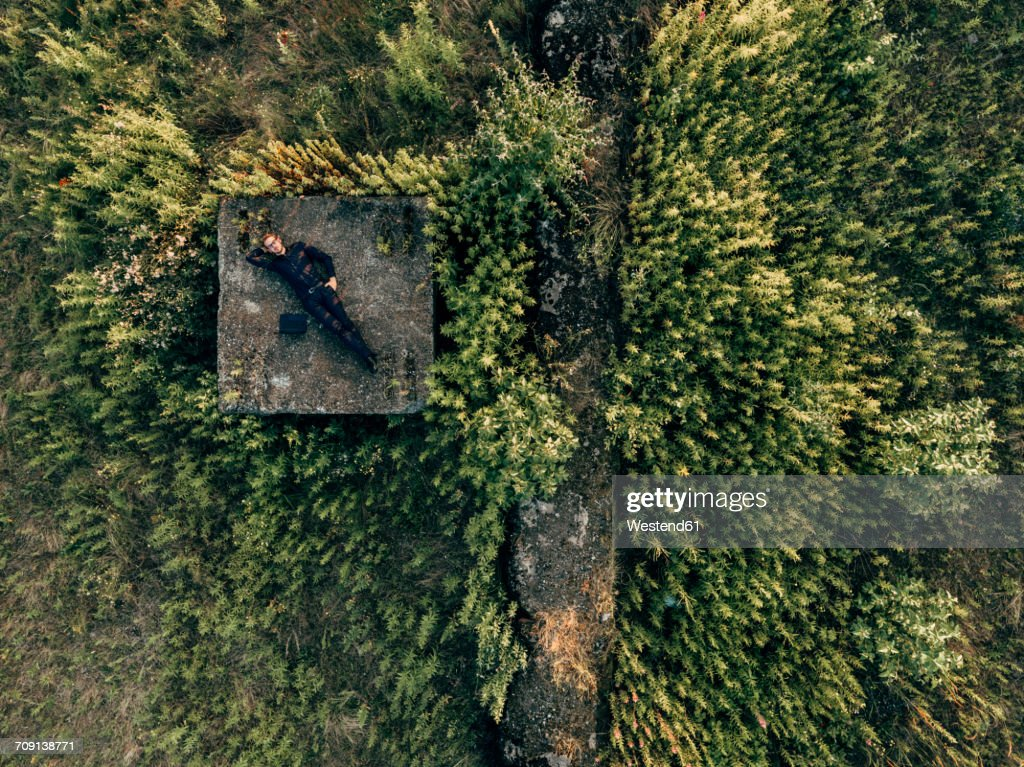 Businessman lying in the nature next to laptop : Stock-Foto