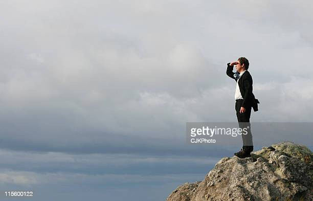 Businessman on the Summit