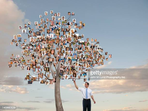 Businessman reaching for photograph on tree with photographs as leaves