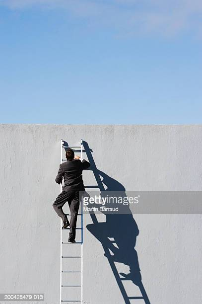 Businessman, rear view, climbing ladder against high concrete wall