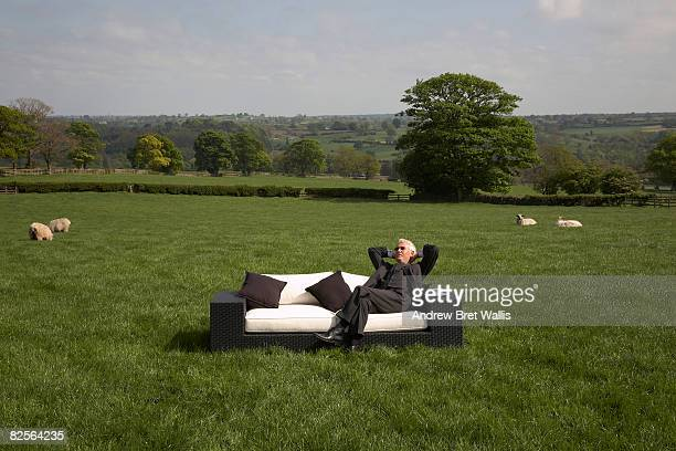 businessman relaxing on sofa in field - eccentric stock pictures, royalty-free photos & images