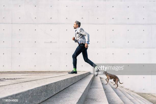 businessman running up stairs with dog outdoors - staircase stock pictures, royalty-free photos & images