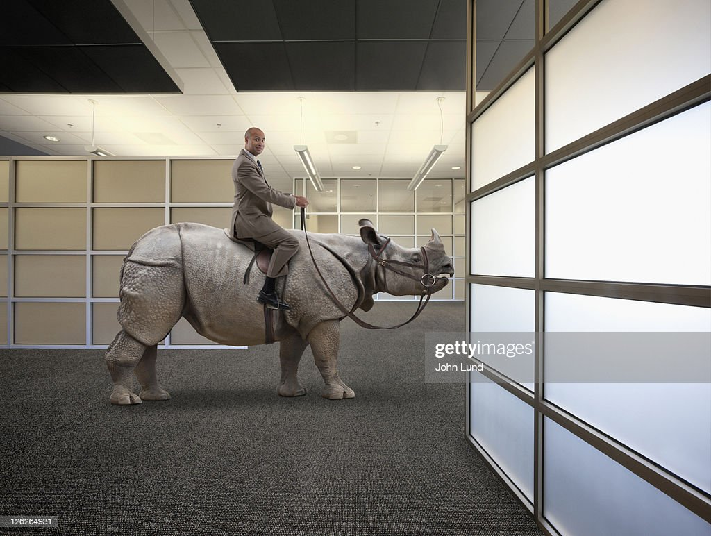 A man, sitting on a rhinoceros, illustrates challenge, change and adversity.