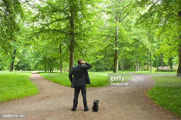 Businessman standing at fork road, rear view