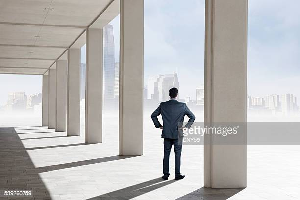 Businessman standing on pavilion looking at distant big city skyline