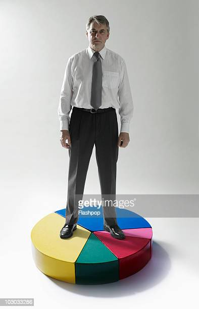 Businessman standing on pie chart