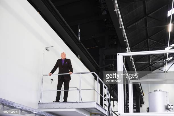 Businessman standing on platform overlooking industrial hall