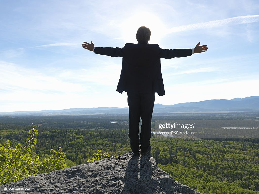 Businessman standing on rock with arms out, rear view, forest and valley in background : Stock Photo