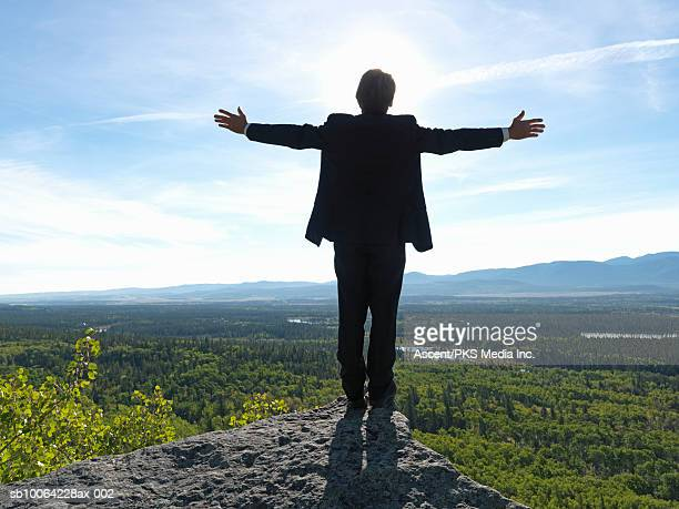 businessman standing on rock with arms out, rear view, forest and valley in background - arms outstretched stock pictures, royalty-free photos & images