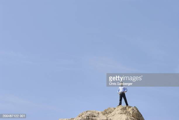 Businessman standing on top of rock, looking into distance