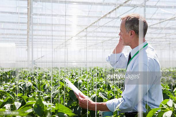 Businessman talking on cell phone in greenhouse