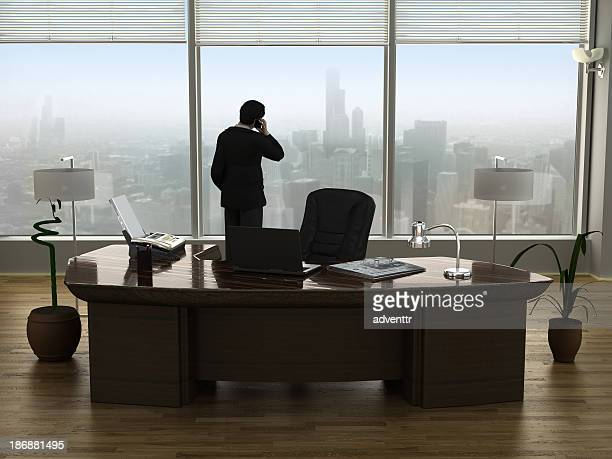 businessman talking on the phone - president stockfoto's en -beelden