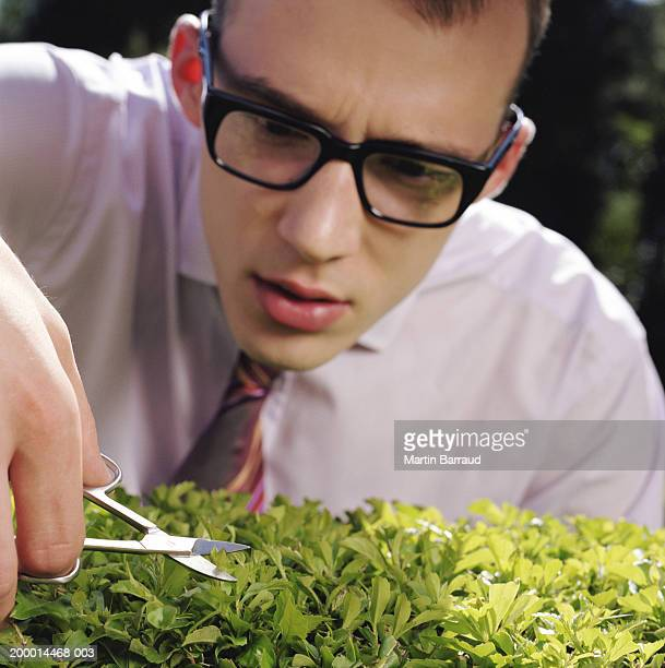 Businessman trimming hedge with nail scissors, close-up