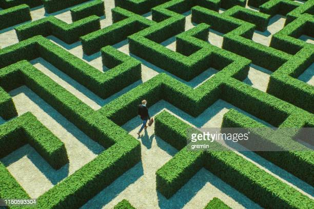 businessman walking in maze - maze stock pictures, royalty-free photos & images