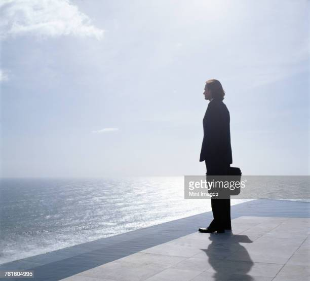 businessman wearing dark suit holding briefcase, standing outdoors at edge of the ocean. - world at your fingertips stock pictures, royalty-free photos & images