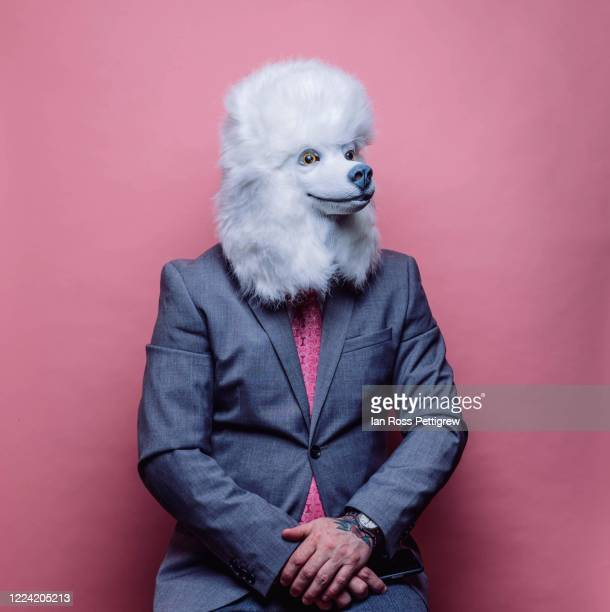 businessman wearing dog poodle mask - bizarre fashion stock pictures, royalty-free photos & images