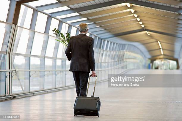 Businessman wheeling luggage with plant