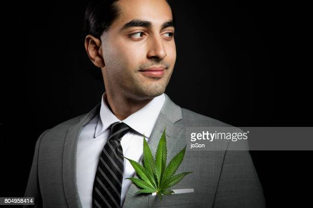 businessman with cannabis sativa leaf in suit jacket breast-pocket - legalization stock pictures, royalty-free photos & images