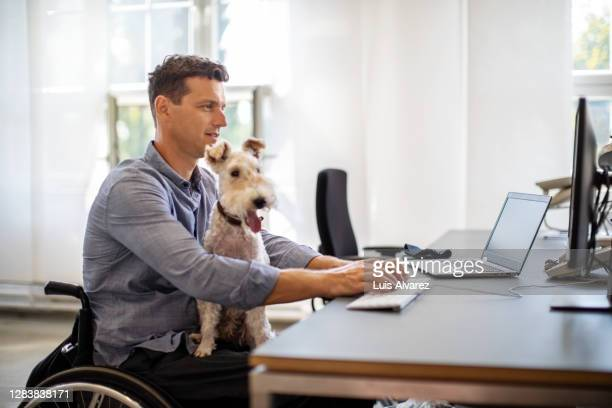 businessman with his pet dog working in office - wheelchair stock pictures, royalty-free photos & images