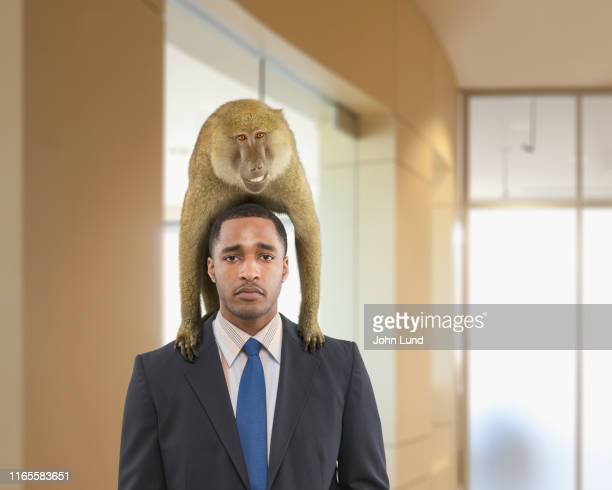 businessman with monkey on his back - monkey man stock pictures, royalty-free photos & images