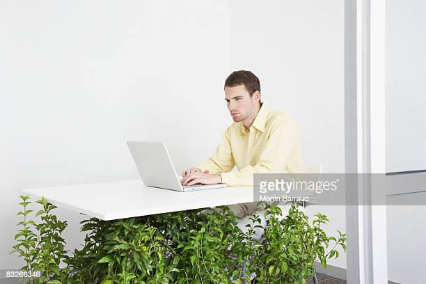 Geschäftsmann Arbeiten am Schreibtisch mit Unterstützung von Pflanzen