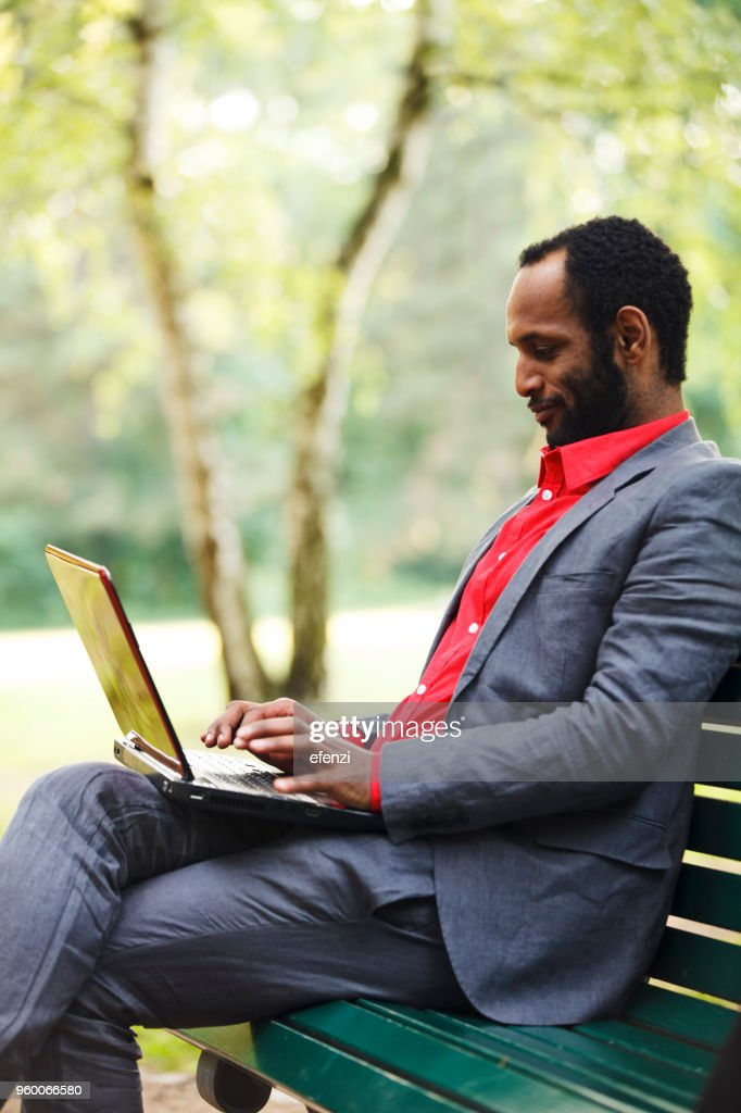 Businessman Working With Laptop In Park : Stock Photo