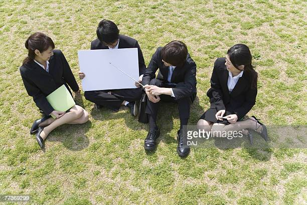 Businessmen and Businesswomen Sitting On Grass, High Angle View, Full Length