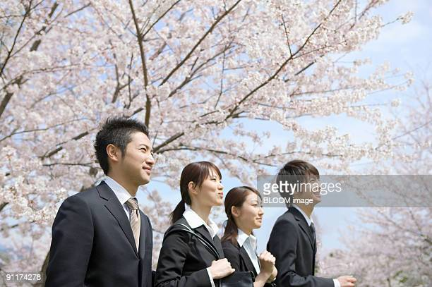 Businessmen and businesswomen smiling, walking in the park