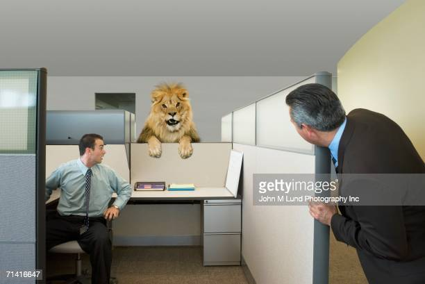 businessmen looking at lion in office cubicle - lion feline stock pictures, royalty-free photos & images