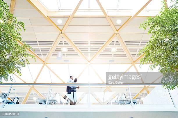 Businessmen walk through sustainable office.