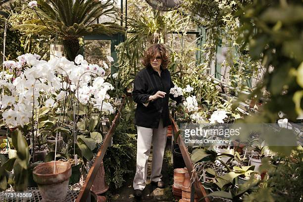 Businesswoman and philanthropist Teresa Heinz Kerry photographed for Self Assignment at Rosemont Farm Pittsburgh PA on April 17 2004