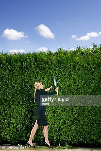 Businesswoman cutting hedge, side view