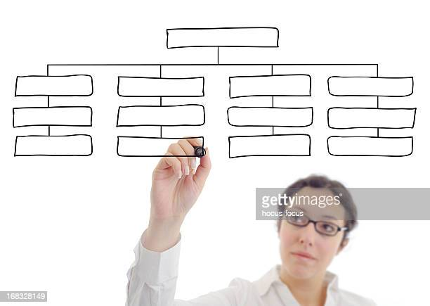 Businesswoman drawing an organization chart