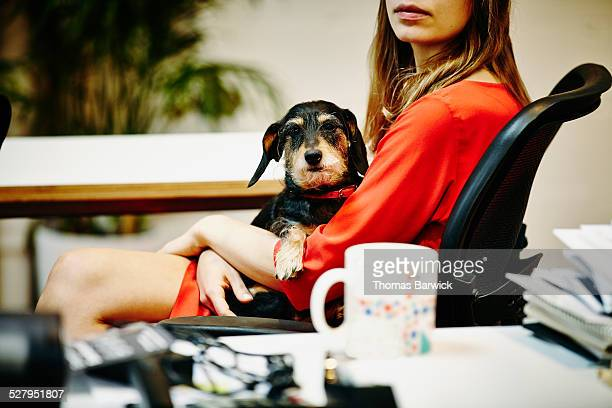 Businesswoman holding dog in lap in office