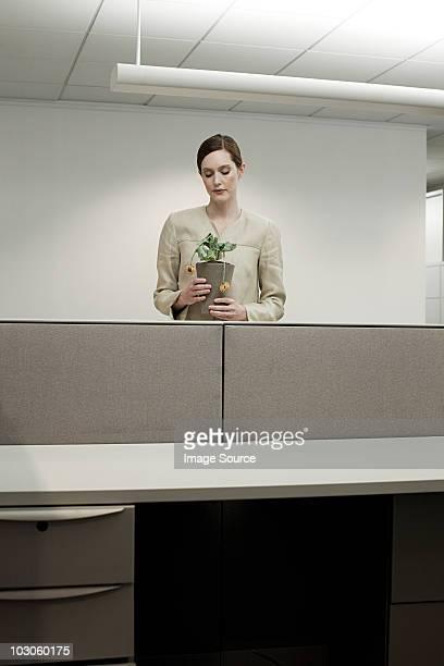 geschäftsfrau in büros mit pot - - abwesenheit stock-fotos und bilder