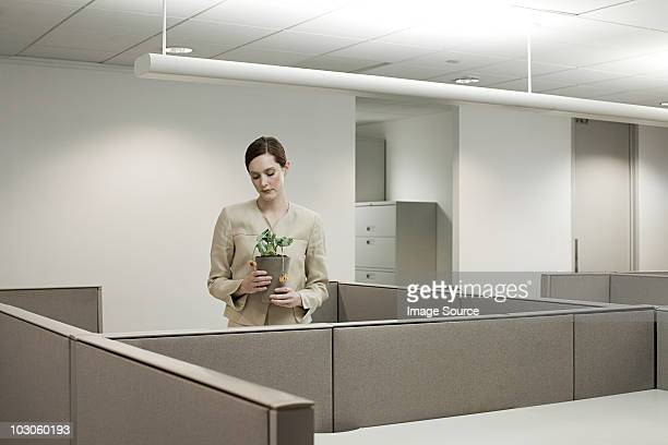 businesswoman in office with pot plant - wilted stock pictures, royalty-free photos & images