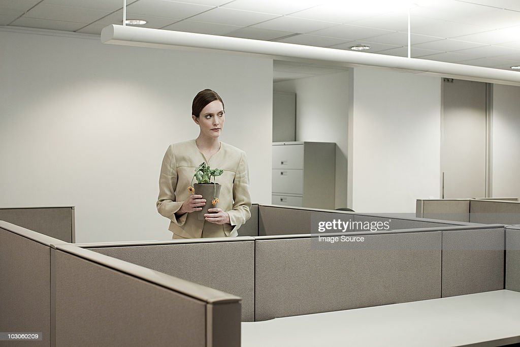 Businesswoman in office with pot plant : Stock Photo
