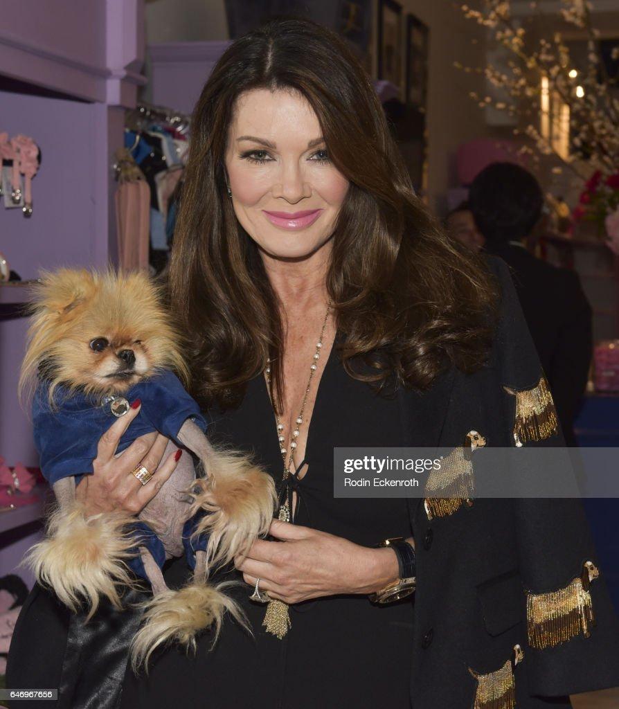 Preview Of The Vanderpump Dog Foundation Rescue Center : News Photo