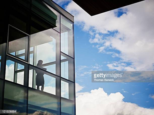 Businesswoman near windows in conference room
