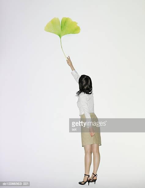 Businesswoman reaching for ginkgo leaf, rear view