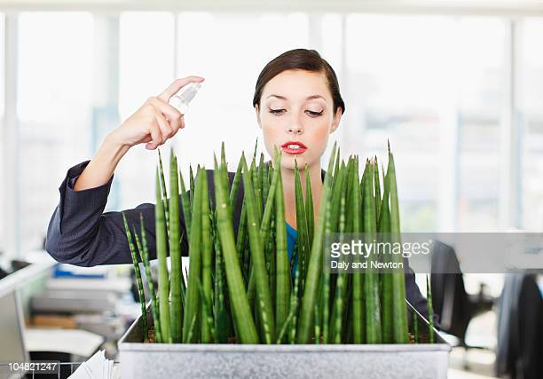 Businesswoman spraying water on flowers